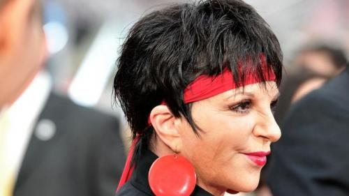 Liza Minnelli to Appear on