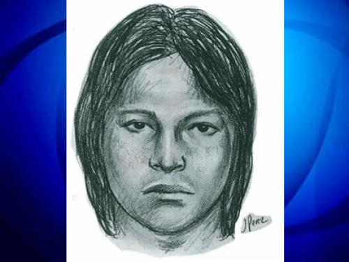 Police Hunt Jackson Heights Serial Groping Suspect