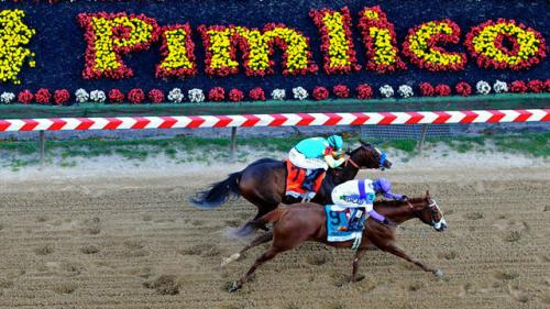 Preakness Stakes By the Numbers