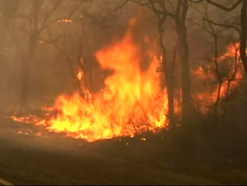 Wind-Fueled Brush Fires Continue To Wreak Havoc On L.I.; NYC, Southern N.J. Also Battling Flames